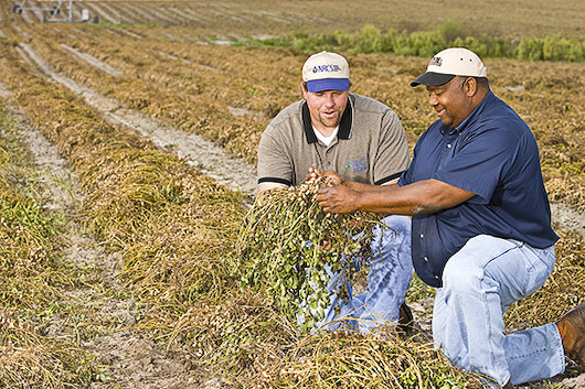 Chris Menhennett, District Conservationist, (left) discusses peanut crop with Donell Gwinn