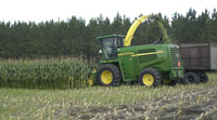 truck working in corn field