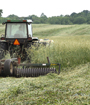 a farmer rolls/crimps his cover crop to manage residue