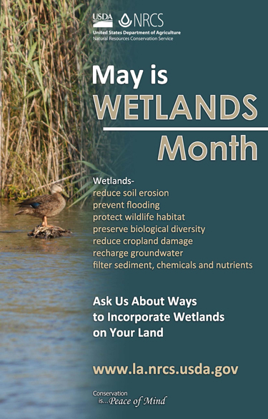 .  Wetlands reduce soil erosion, prevent flooding, protect wildlife habitat, preserve biological diversity, reduce cropland damage, recharge groundwater, and filter sediment, chemicals, and nutrients.  Ask us about ways to incorporate wetlands on your land.  www.la.nrcs.usda.gov