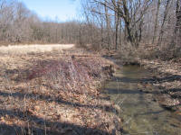 Photo of a floodplain