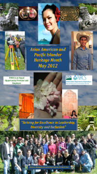 Asian American and Pacific Islander Poster