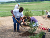 interns help plant at Snyder Farm