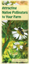 cover of brochure Attracting Native Pollinators to Your Farm