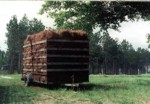bales of pine straw stacked on a trailer