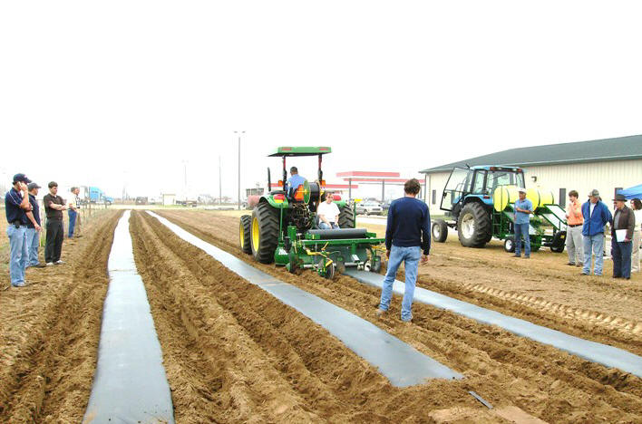 Tractor laying plastic rows.