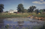 waste impoundments (360)