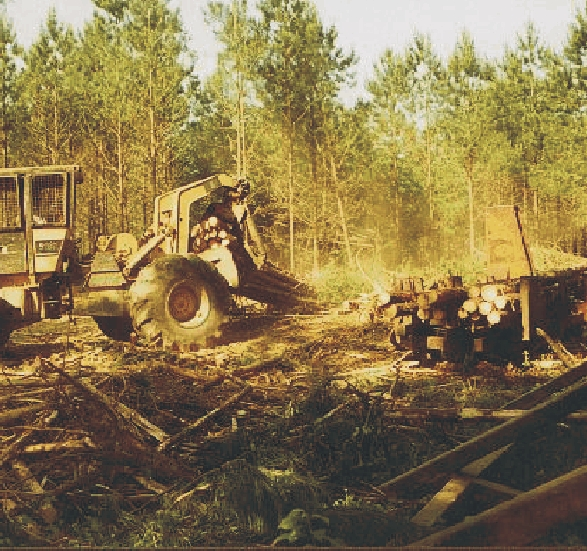 Skidder at loading dock