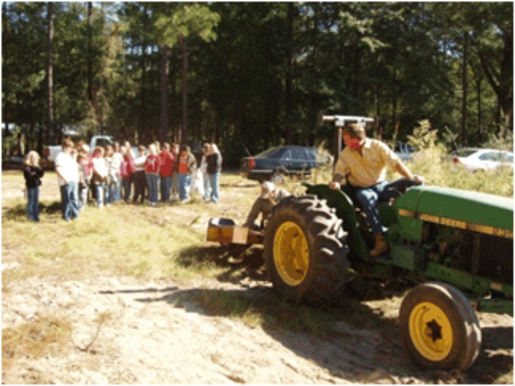 A tractor planting pine seedlings.