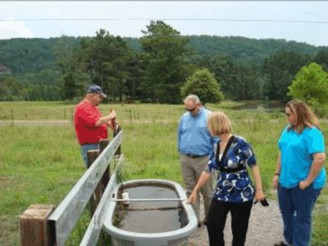 Group looks at spring fed trough.