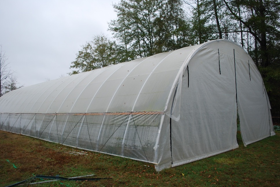 Hoop house constructed on Michael Pitt's farm.