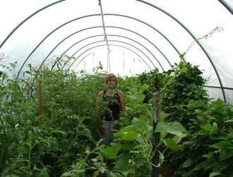 Producer stands in hoop house.