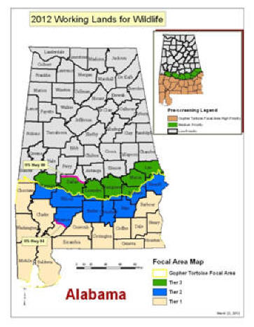 Map of Alabama Gopher Tortoise focal area.