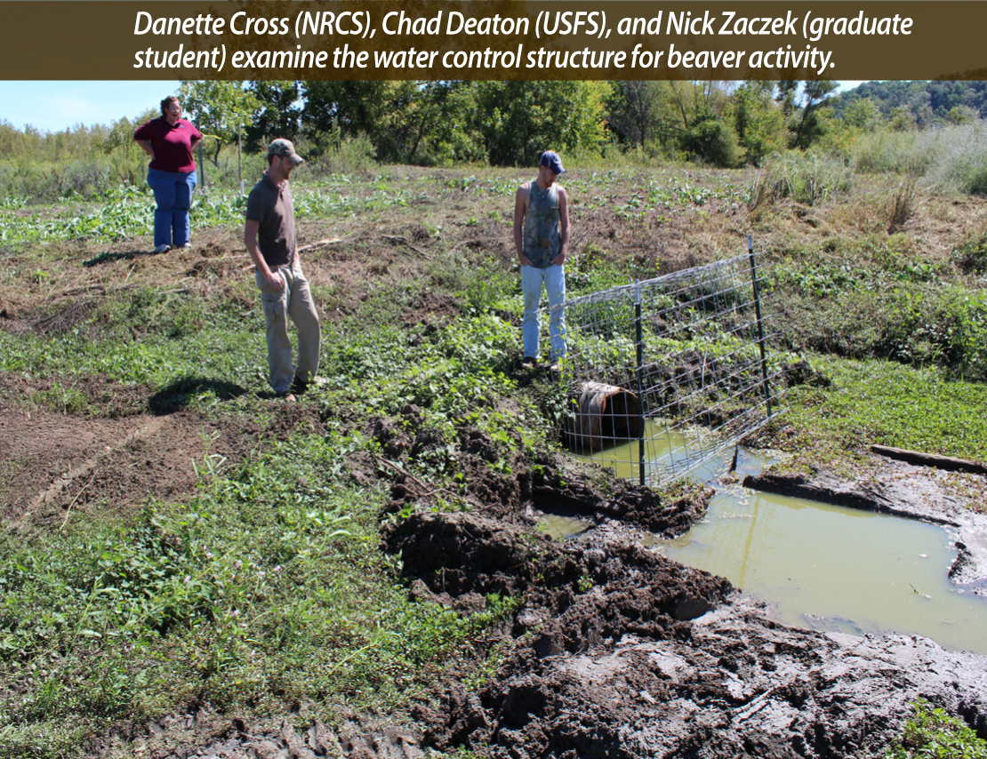 Danette Cross (NRCS), Chad Deaton (USFS), and Nick Zaczek (graduate student) examine the water control structure for beaver activity.