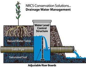 Graphic of how drainage water management works