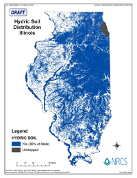 Hydric Soil Distribution in Illinois