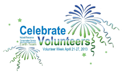 Volunteer Celebration ad with colorful fireworks