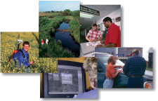 Collage of NRCS employees