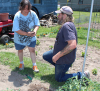 Cheryl and James plant some Abe Lincoln tomatoes in Linda's garden