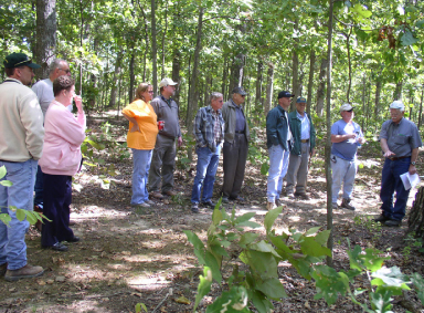 Photo of people standing in a wooded area