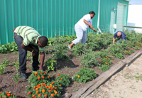 restoration residents weed the Hope Garden