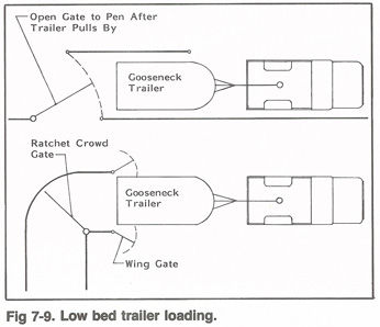 Diagram of Low Bed Trailer Loading