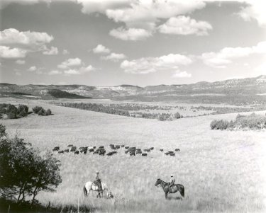 Heaton Brothers Ranch in Kane County