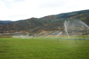 Sprinklers on the Kamas Property
