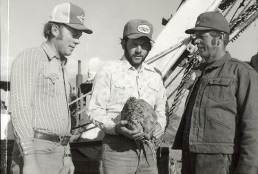 Lawrence Wade and sons, looking at a sugar beet, were named Weber SCD outstanding farmers for 1979.