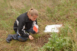 Students carefully study plants staked in the plant identification part of the contest.