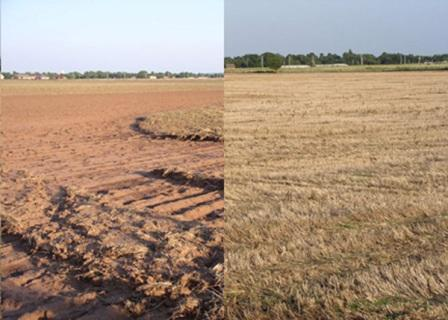 Neighboring fields. Left: Erosion after an August 2007 rain storm.