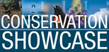 Oklahoma Conservation Showcase Stories logo - Click here for stories