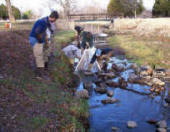 Student Earth Team volunteers collecting macro invertebrates in a stream.