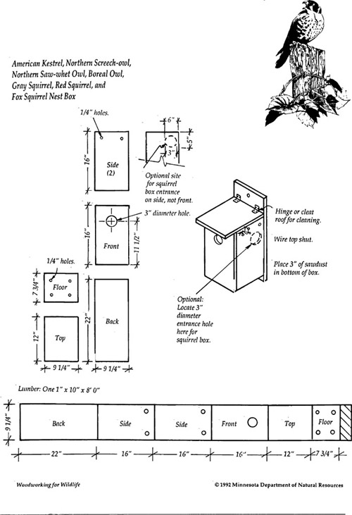 Owl Nesting Box uk Owl And Squirrel Nest Box