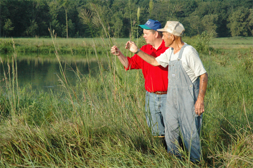 NRCS District Conservationist Drew DeLang and farmer Ivan Keller examine a stand of wild rice on the edge of a wetland on Keller�s farm in August 2007.  The wild rice planting is part of an experiment to reintroduce wild rice to Louisa County in southeastern Iowa.  Wild rice, which can grow 15 feet tall, was once prevalent throughout Iowa.