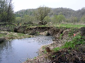 Stream banks in need of stabilization.