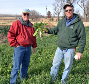 District Conservationist Greg Mathis and farmer Lowell Forristall discuss the healthy growth of his cover crops planted in August.