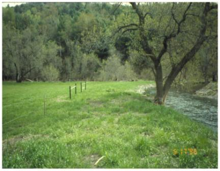 Photograph of a fence iInstalled to exclude grazing livestock from a stream