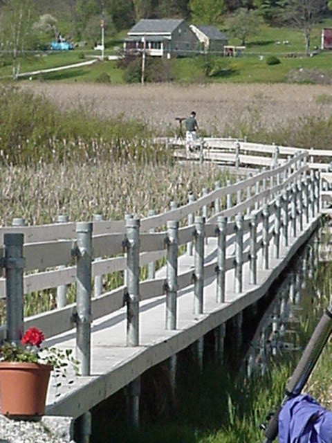 handicapped-accessible boardwalk extending into the West Rutland marsh