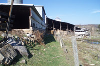 Before: Barn and cattle handling area along Smith Creek