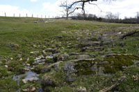 Karst topography on the Yancey property.