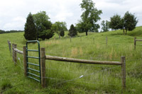 Cross fencing with gates allows Nelson to easily move his herd.