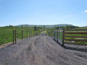 After: The livestock walkway and rotational grazing system helps keep the soil covered and reduce r