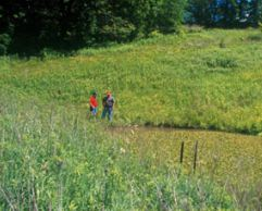 Photo of NRCS conservationist and landowner on land in the Conservation Reserve Program.