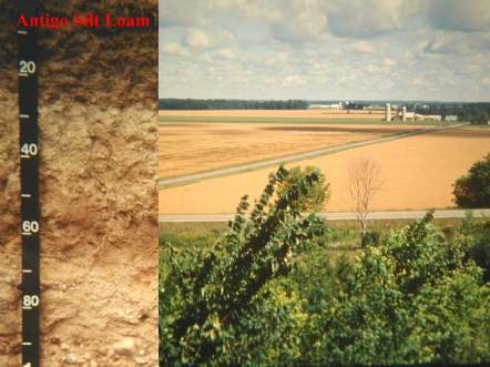 Photo of farmland containing Antigo Silt Loam and the soil profile.