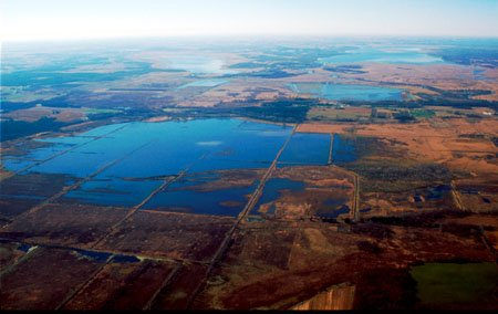 Aerial Photo of Duffy's Marsh in Marquette County, Wisconsin. [NRCS Photo]