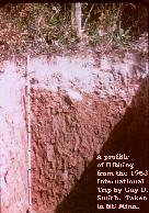 Soil Profile of Hibbing Soil from the 1953 International Trip by Guy Smith.