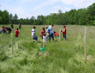 Rice Lake Boys and Girls Club assist with tree planting