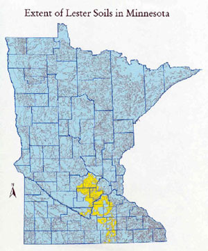Extent of Lester Soil in Minnesota map