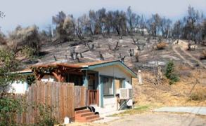 Hillside damaged by fire